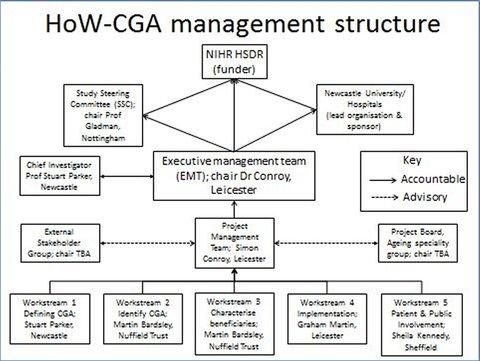 Management Structure Diagram