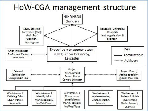 Management Structure Diagram
